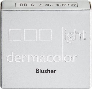 Kryolan Dermacolor Light tvářenka 2