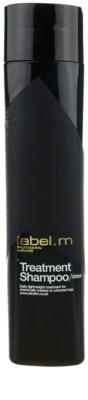 label.m Cleanse защитен шампоан  за боядисана коса