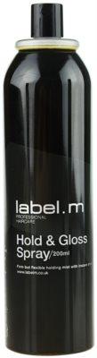 label.m Complete лак за коса за фиксация и блясък 1
