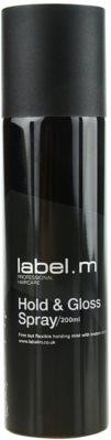 label.m Complete Haarlack für Halt und Glanz