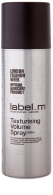 label.m Complete oblikovalno pršilo za volumen