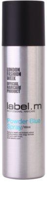 label.m Complete barvni puder za lase v pršilu