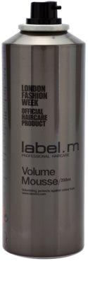 label.m Create pianka do włosów utrwalająca do włosów delikatnych 1