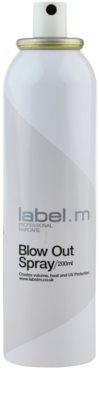 label.m Create sprej pro tepelnou úpravu vlasů 1