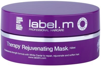 label.m Therapy  Age-Defying revitalizáló maszk hajra hajra