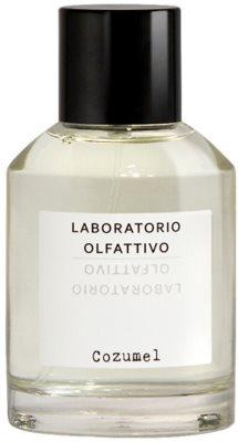 Laboratorio Olfattivo Cozumel parfémovaná voda pre mužov 5