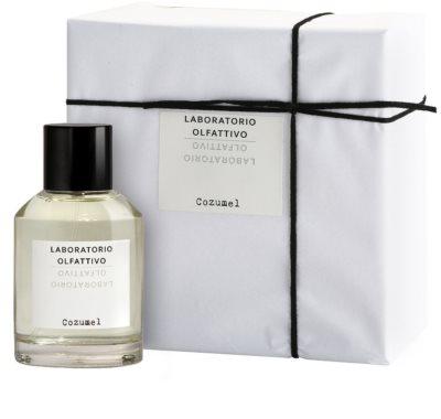 Laboratorio Olfattivo Cozumel parfémovaná voda pre mužov 1