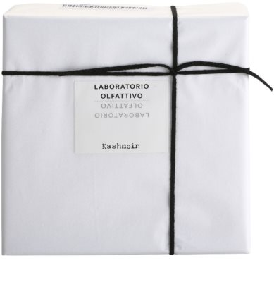 Laboratorio Olfattivo Kashnoir parfumska voda uniseks 4