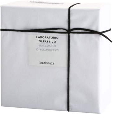 Laboratorio Olfattivo Kashnoir parfumska voda uniseks 3