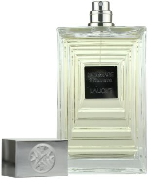 Lalique Hommage a L'Homme Eau de Toilette for Men 3