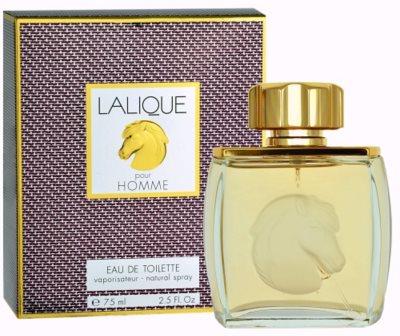 Lalique Pour Homme Equus eau de toilette para hombre