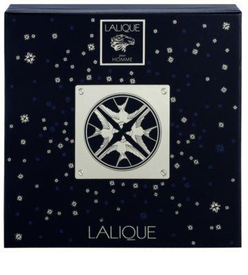 Lalique Pour Homme Lion Geschenkset 2