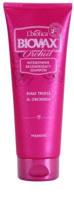 L'biotica Biovax Glamour Orchid champú para cabello liso y brillante