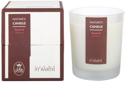 Ligne ST. Barth Guave vela perfumado