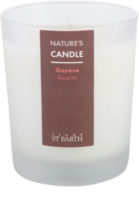 Ligne ST. Barth Guave vela perfumado 1