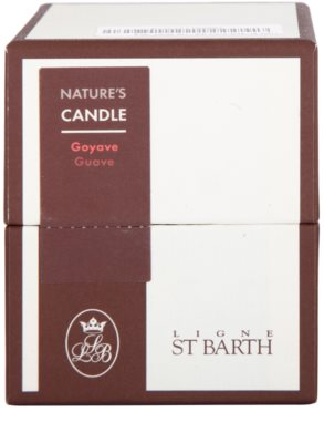 Ligne ST. Barth Guave vela perfumado 3
