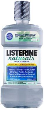 Listerine Naturals Herbal Mint Antiseptisches Mundwasser mit Fluor