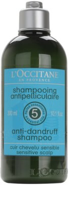 L'Occitane Hair Care champô anticaspa