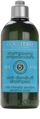 L'Occitane Hair Care korpásodás elleni sampon