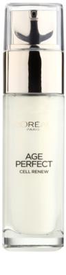 L'Oréal Paris Age Perfect Cell Renew szérum érett bőrre