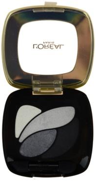 L'Oréal Paris Color Riche sombras
