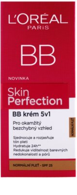 L'Oréal Paris Skin Perfection BB Creme 5 in 1 SPF 25 2