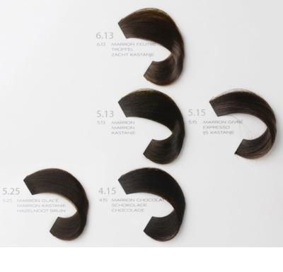 L'Oréal Professionnel Diarichesse barva na vlasy 4