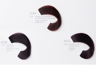 L'Oréal Professionnel Diarichesse barva na vlasy 6