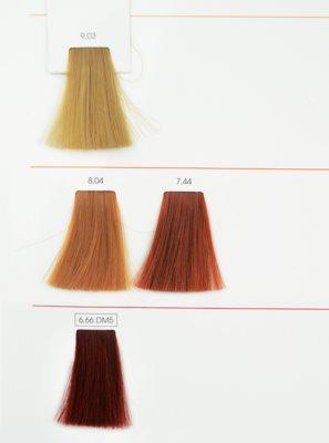 L'Oréal Professionnel Inoa ODS2 фарба для волосся 3
