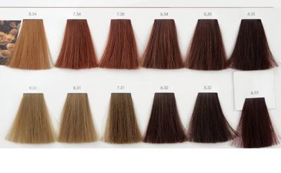 L'Oréal Professionnel Inoa ODS2 фарба для волосся 6