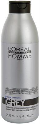 L'Oréal Professionnel Homme Care sampon pentru par grizonat