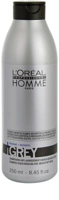 L'Oréal Professionnel Homme Care шампоан  за сива коса