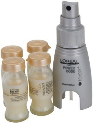 L'Oréal Professionnel Série Expert Absolut Repair Lipidium Sofort-Pflege für stark geschädigtes Haar 1
