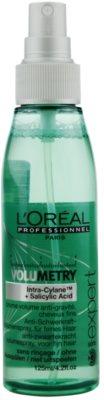 L'Oréal Professionnel Série Expert Volumetry sprej pro objem od kořínků 1