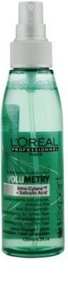 L'Oréal Professionnel Série Expert Volumetry spray volum de la radacini 1