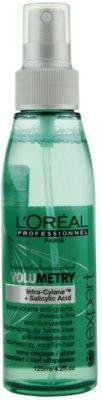 L'Oréal Professionnel Série Expert Volumetry spray volum de la radacini