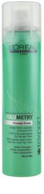 L'Oréal Professionnel Série Expert Volumetry sampon uscat pentru volum