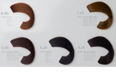 L'Oréal Professionnel Richesse de Diacolor Haarfarbe 4