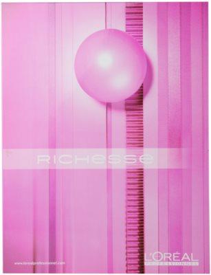 L'Oréal Professionnel Richesse de Diacolor hajfesték 1