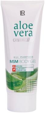 LR Aloe Vera Special Care Gel Aloe Vera MSM para músculos e articulações doloridos