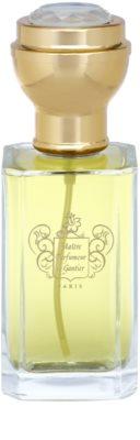 Maitre Parfumeur et Gantier Or Des Indes eau de parfum para mujer 2