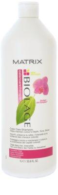 Matrix Biolage ColorcareThérapie Color Care ochranný šampon pro barvené vlasy