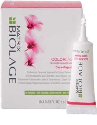 Matrix Biolage Color Last Haarkur für eine schimmernde Haarfarbe
