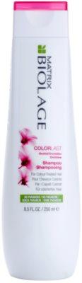 Matrix Biolage Color Last Shampoo für gefärbtes Haar