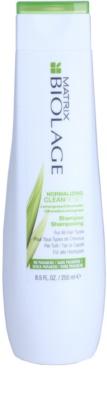 Matrix Normalizing Clean Reset čisticí šampon pro všechny typy vlasů