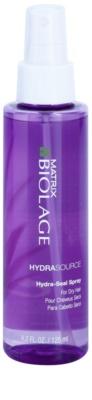 Matrix Biolage HydraThérapie vlasová kúra