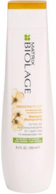 Matrix Biolage SmoothProof uhlazující šampon pro nepoddajné a krepatějící se vlasy