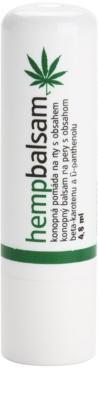 MEDICPROGRESS Cannabis Care Hanf-Lippenbalsam