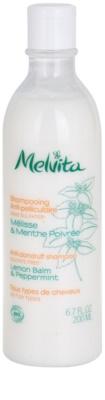 Melvita Anti-dandruff Shampoo gegen Schuppen für alle Haartypen