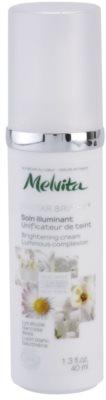 Melvita Nectar Bright Creme zur Verjüngung der Gesichtshaut